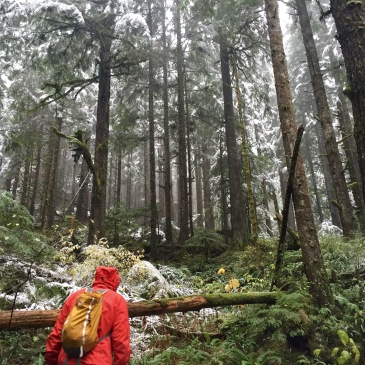 Winter Hiking in the Pacific Northwest- Heather Lake