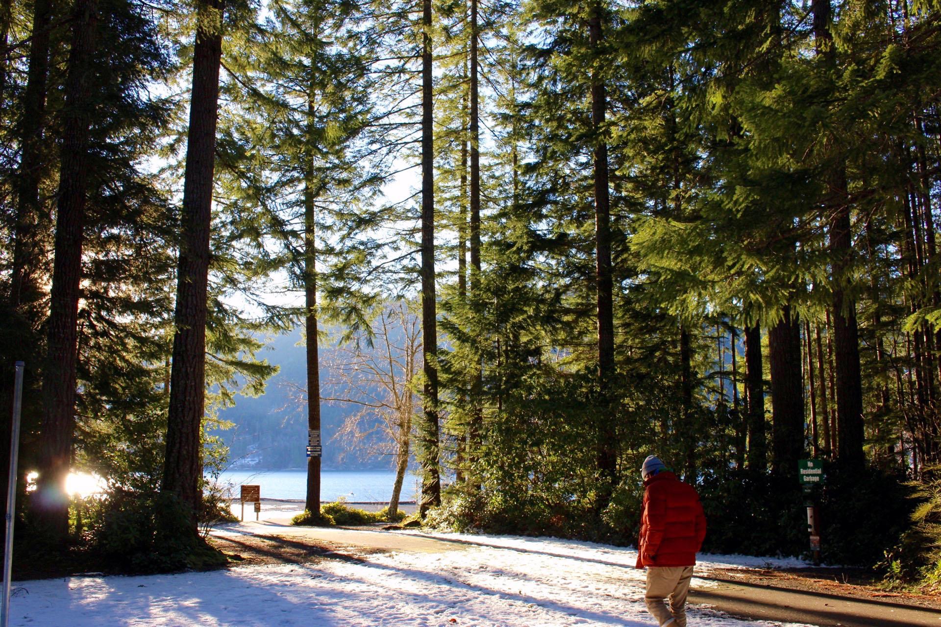 lake-cushman
